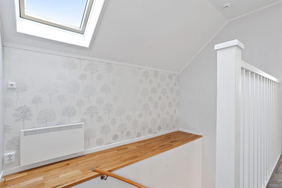 Trappa mellan planen med takfönster